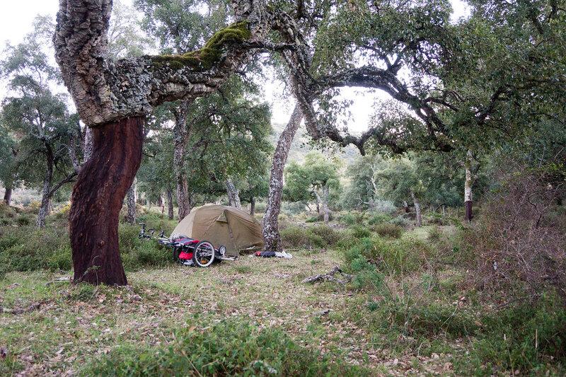 ночевка в палатке в дубовом лесу в парке los alcornocales