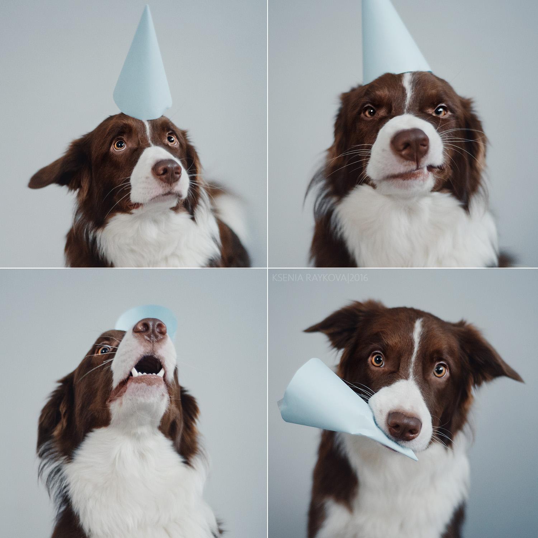Первый День рождения Бумбокса!