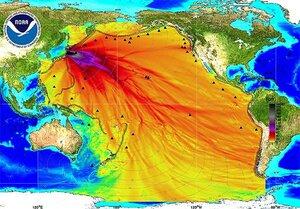 карта заражения океана из-за Фукусимы.jpg