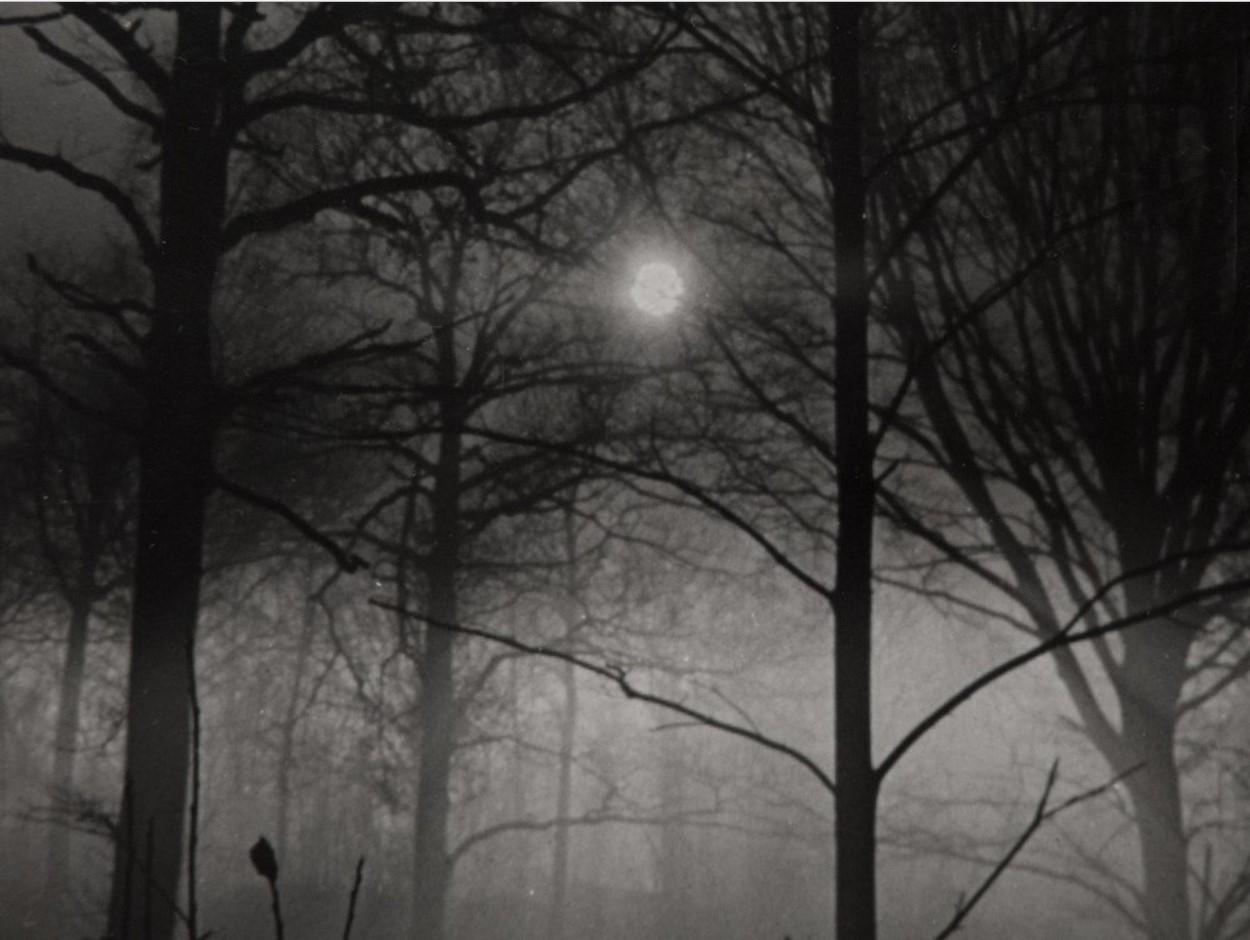 1930-е. Ночные фотографии