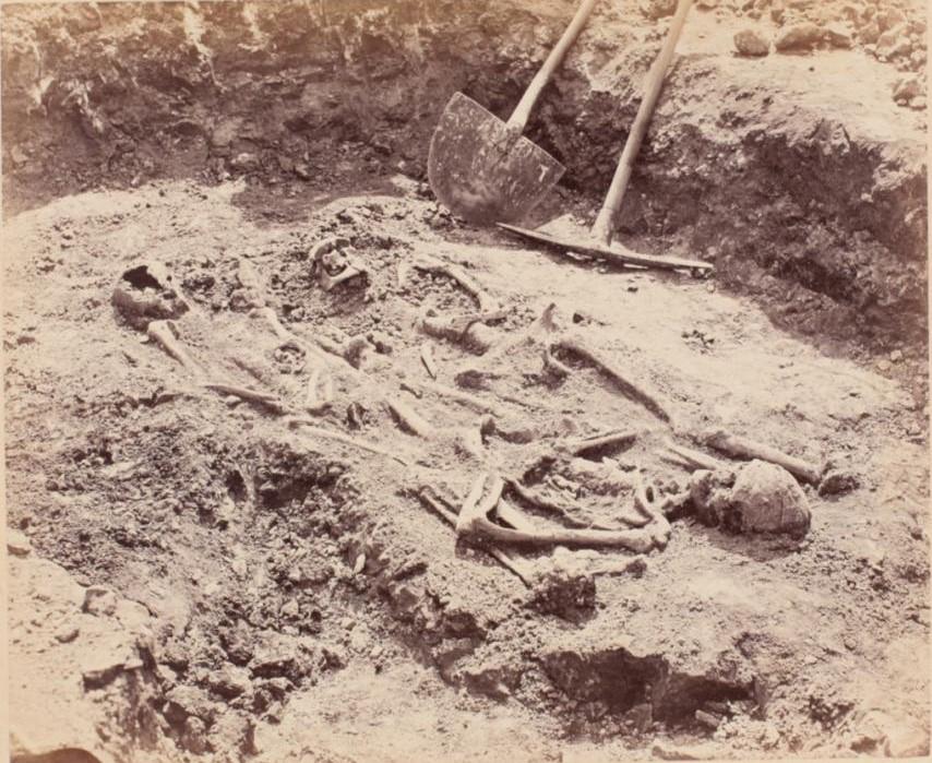 Отрытые скелеты