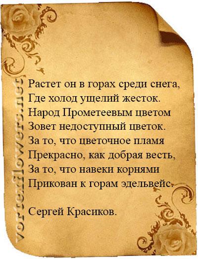 стихи об эдельвейсе