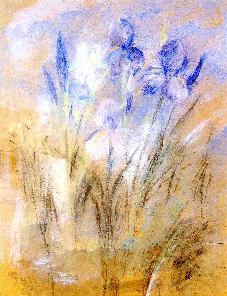 Irises, 1894-96.jpeg