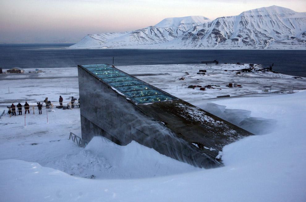 Всемирный банк-семенохранилище посадочного материала создан в 2006году под эгидой ООН для сохранения