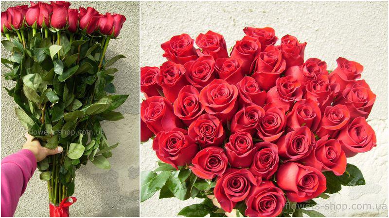 красные розы 1м