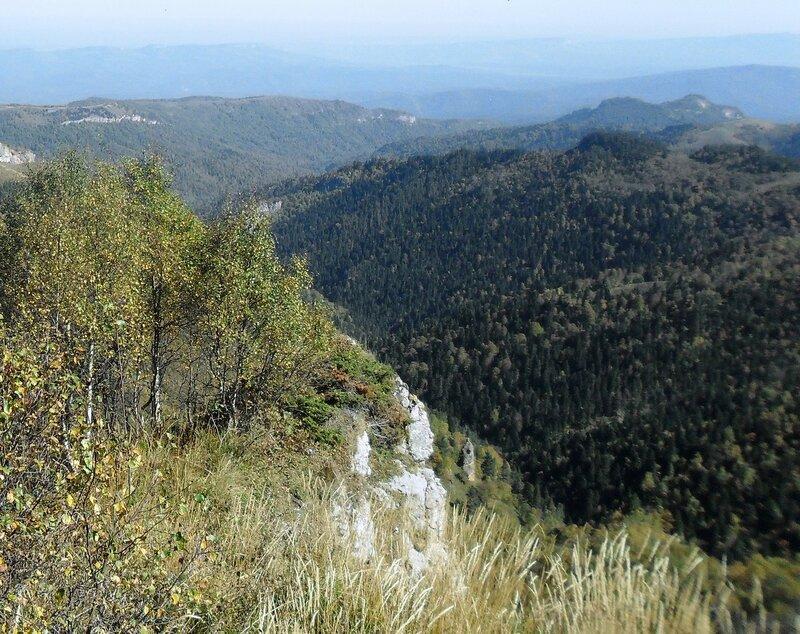 Лесные дали, в горной стране ... SAM_3351 - 1.JPG