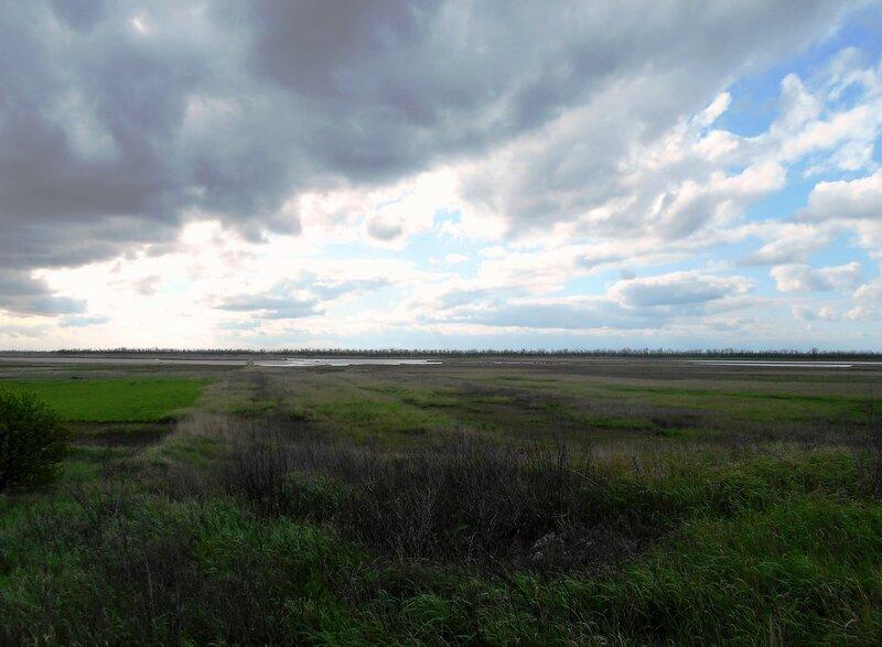 Приазовские просторы, в день облачно-ветренный весенний ... DSCN5244.JPG