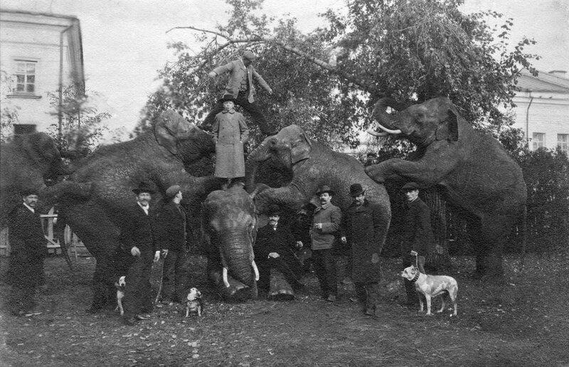 Казань. Чёрное озеро. Цирк Никитиных. 1900-е.jpg
