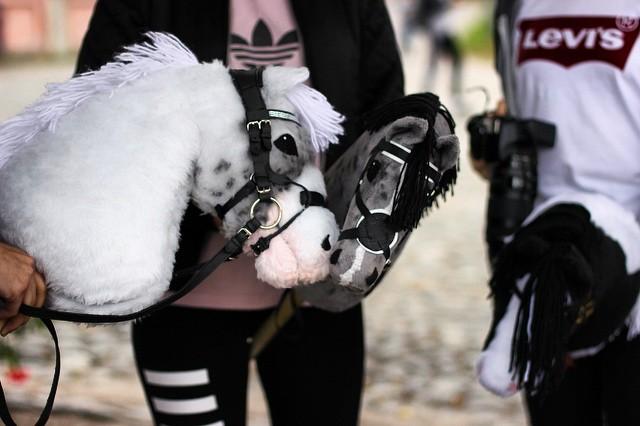 Хоббихосинг: новый спортивный тренд в Финляндии