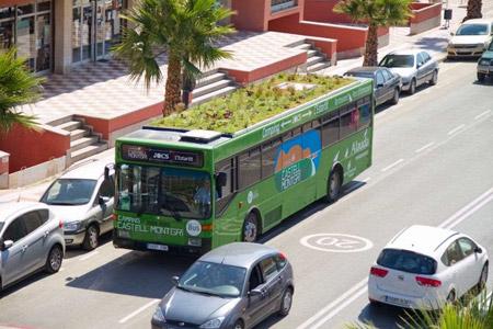 Крыши мадридских автобусов будут украшать сады