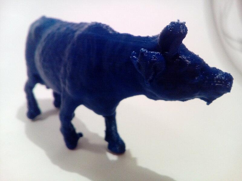 Коровы-01.jpg