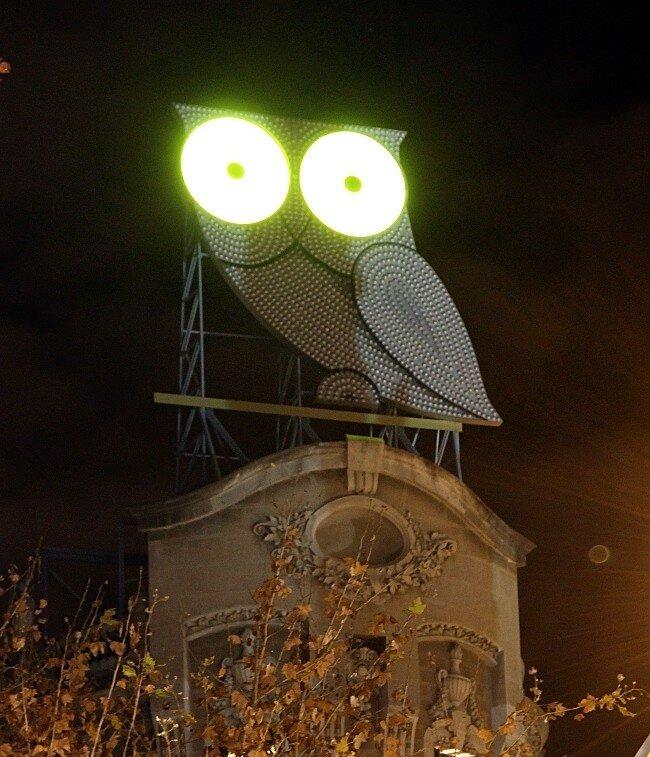 Ночная Барселона. Сова Рура (Mussol dels Roura)