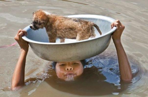 Во время наводнения в Филиппинах девочка пытается спасти своего щенка.