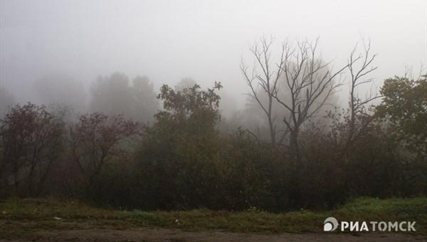 Сильный туман остановил работу томского аэропорта