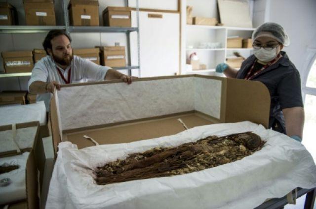 Ученые проинформировали о расшифровке ДНК древнейших мумий индейцев чинчорро