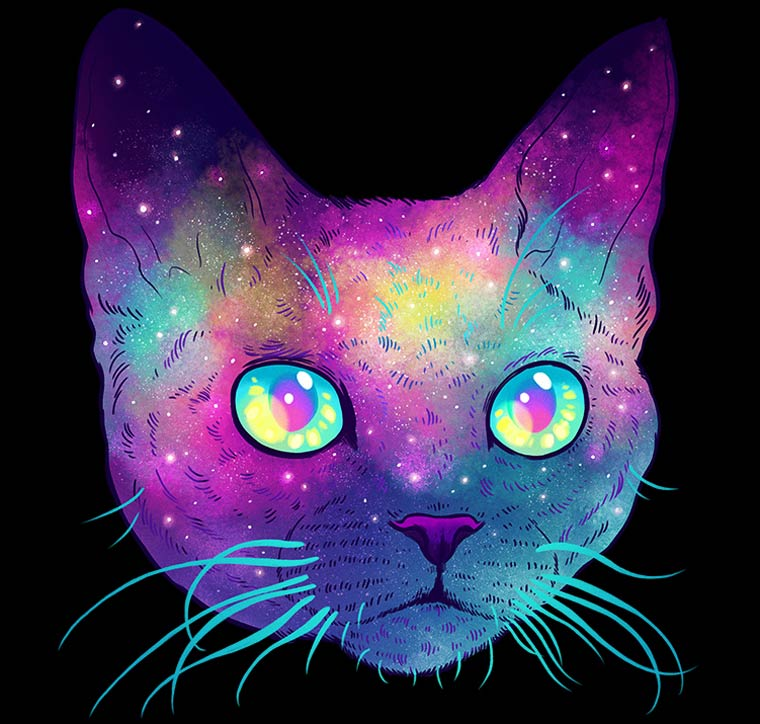 Galactic Cats - The explosive and colorful illustrations by Jen Bartel