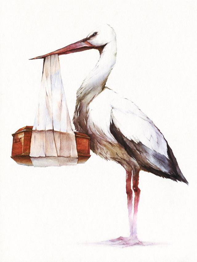 Reey Whaar - Illustrator