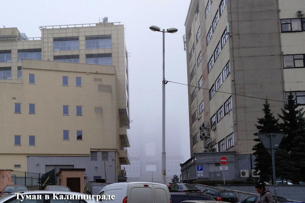 fog_20161014_.jpg
