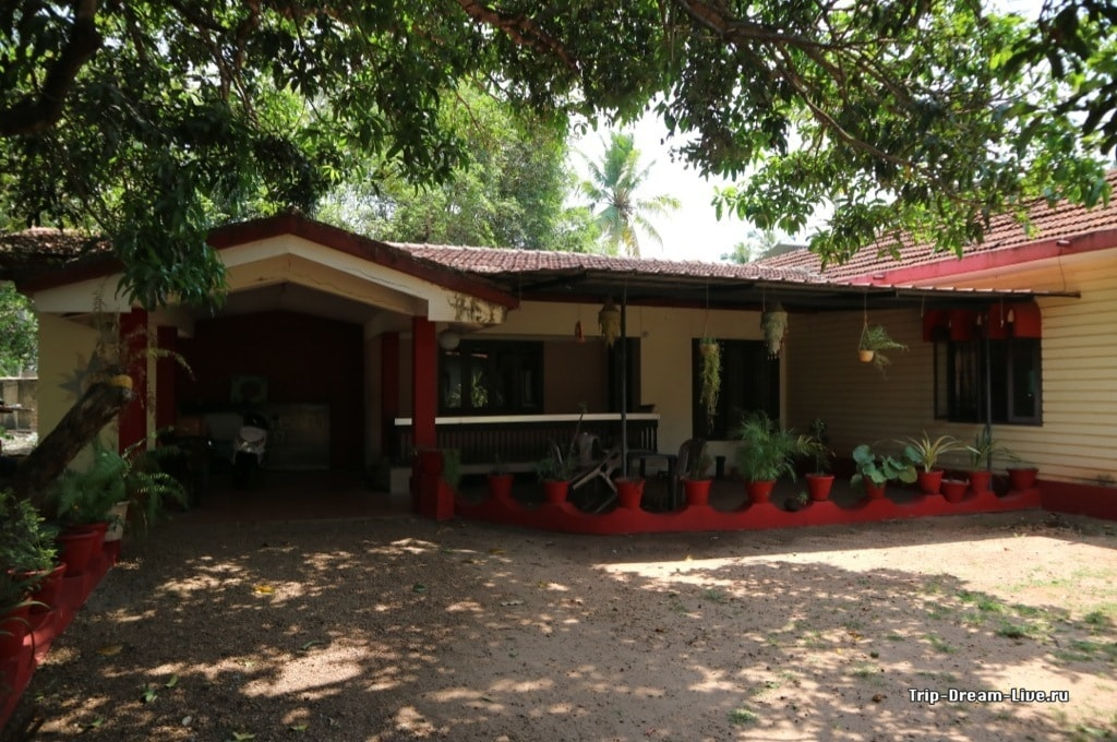 Внутренний дворик Dream Nest Guesthouse