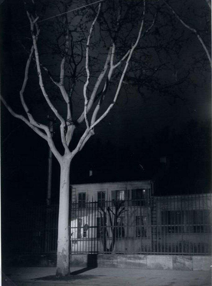 1931. Без названия