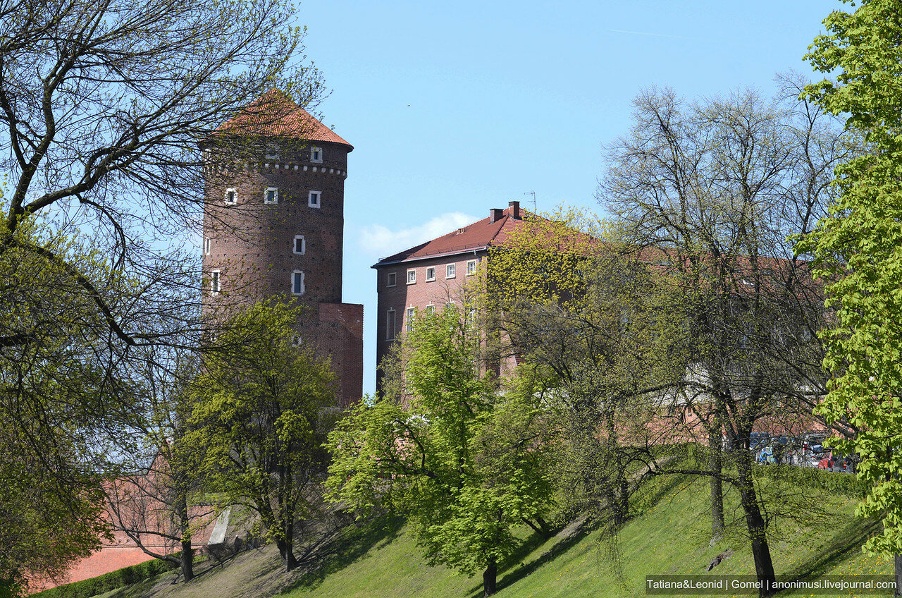 Вавельский замок. Краков. Польша