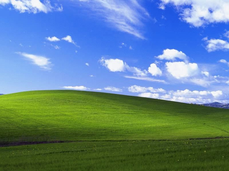 Microsoft купила эту фотографию за сумму, которая не разглашается. Чарльз говорит, что стоимост