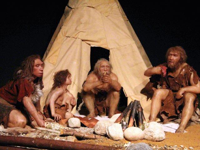 Стало известно, что заставило людей заниматься сексом снеандертальцами