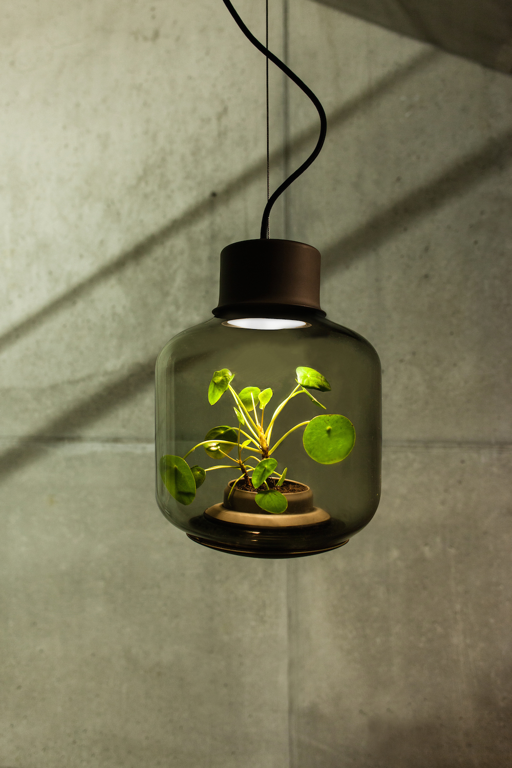 Nui Studio (formerly We Love Eames) has designed a lamp fit for the dim and sun-shielded garden apar