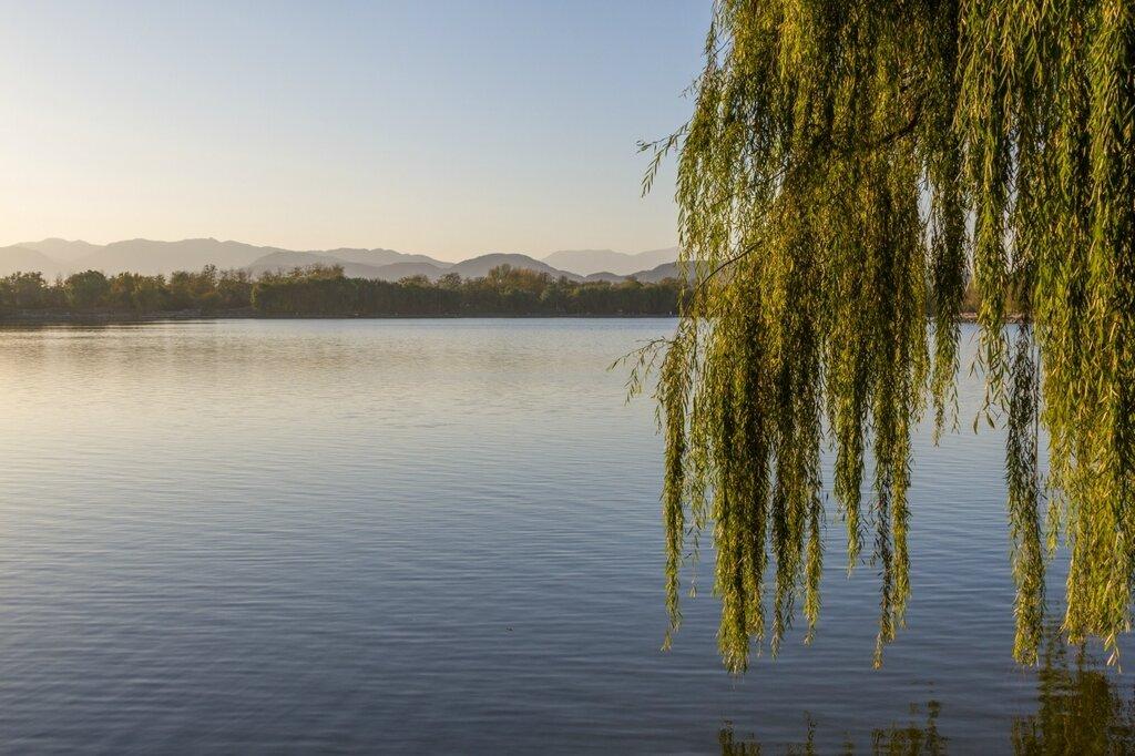 Озеро Фухай в предзакатный час, парк Юаньминъюань, Пекин