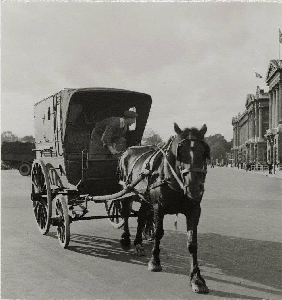 Повозка на городской улице