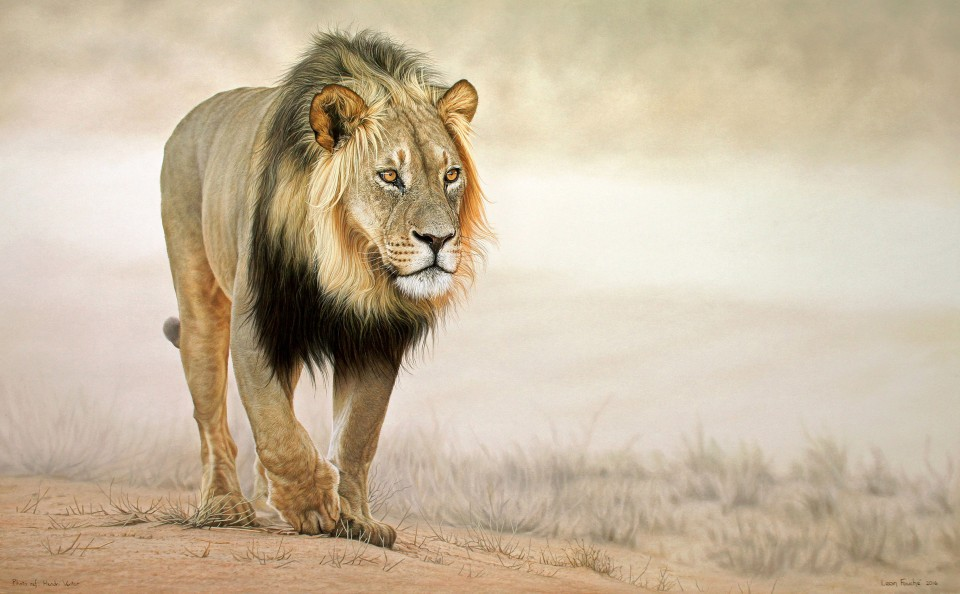 HYPER REAL ANIMAL PAINTINGS