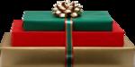 Present Boxser #1 (175).png