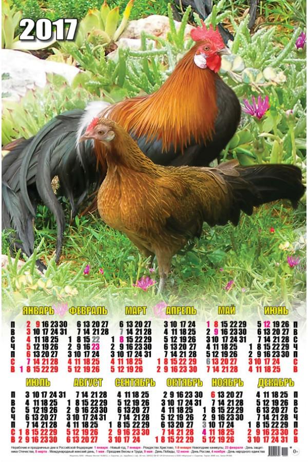 Календарь на 2017 г. Красивый длиннохвостый петух с курочкой