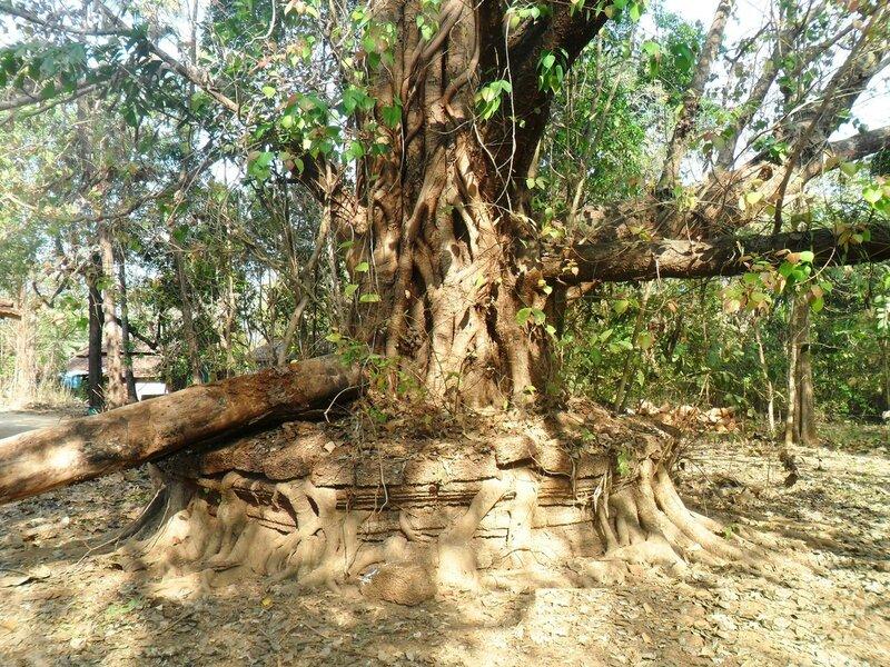 Индия, фотоальбом, фотографии В. Лана ... SAM_7003.JPG