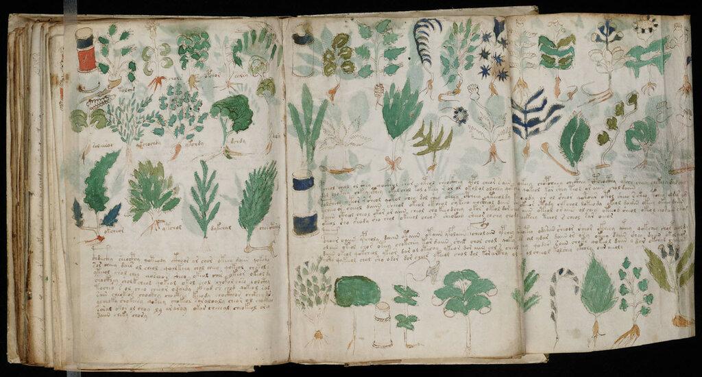 manuscrito176.jpg
