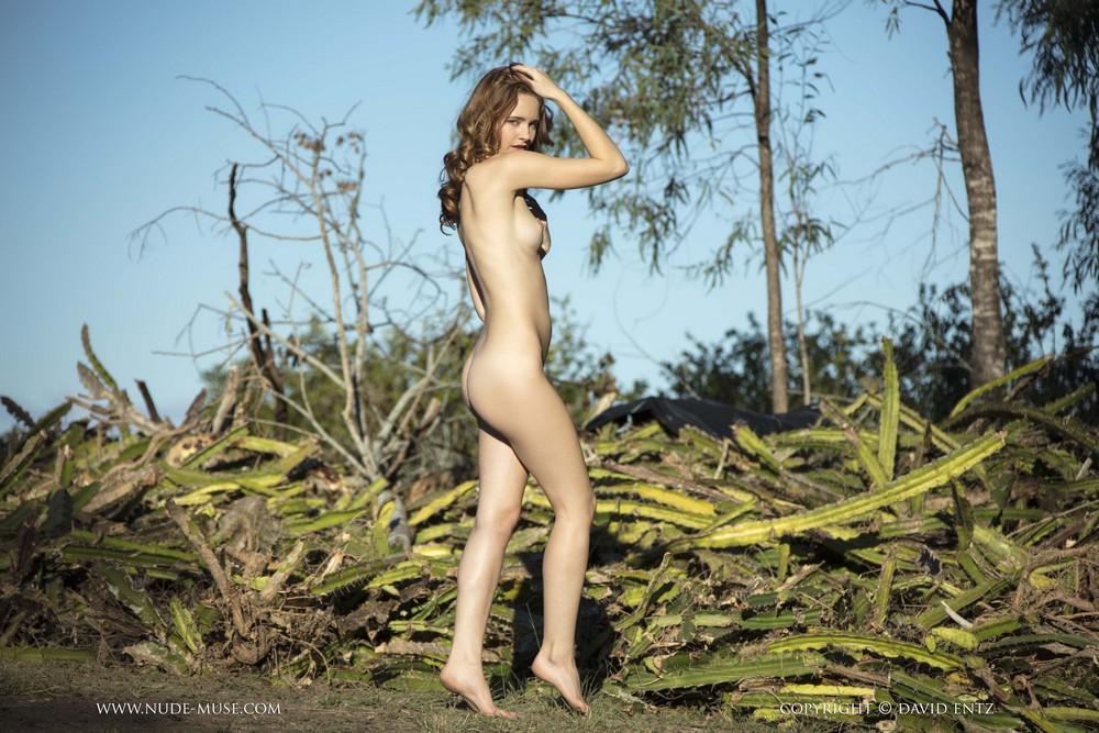 Обнаженная Эвелин на фоне кактусов
