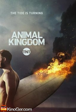 Animal Kingdom Staffel 1-2 (2017)