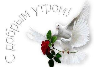 https://img-fotki.yandex.ru/get/508505/131884990.f1/0_160b86_e4a5bcb7_M.jpg