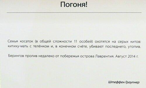 https://img-fotki.yandex.ru/get/508505/140132613.6d5/0_24485b_5fc125e6_L.jpg