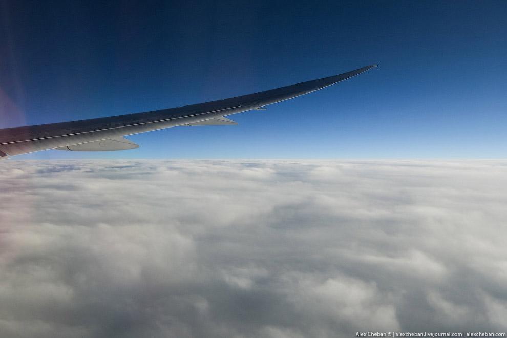 Самолет Мечты