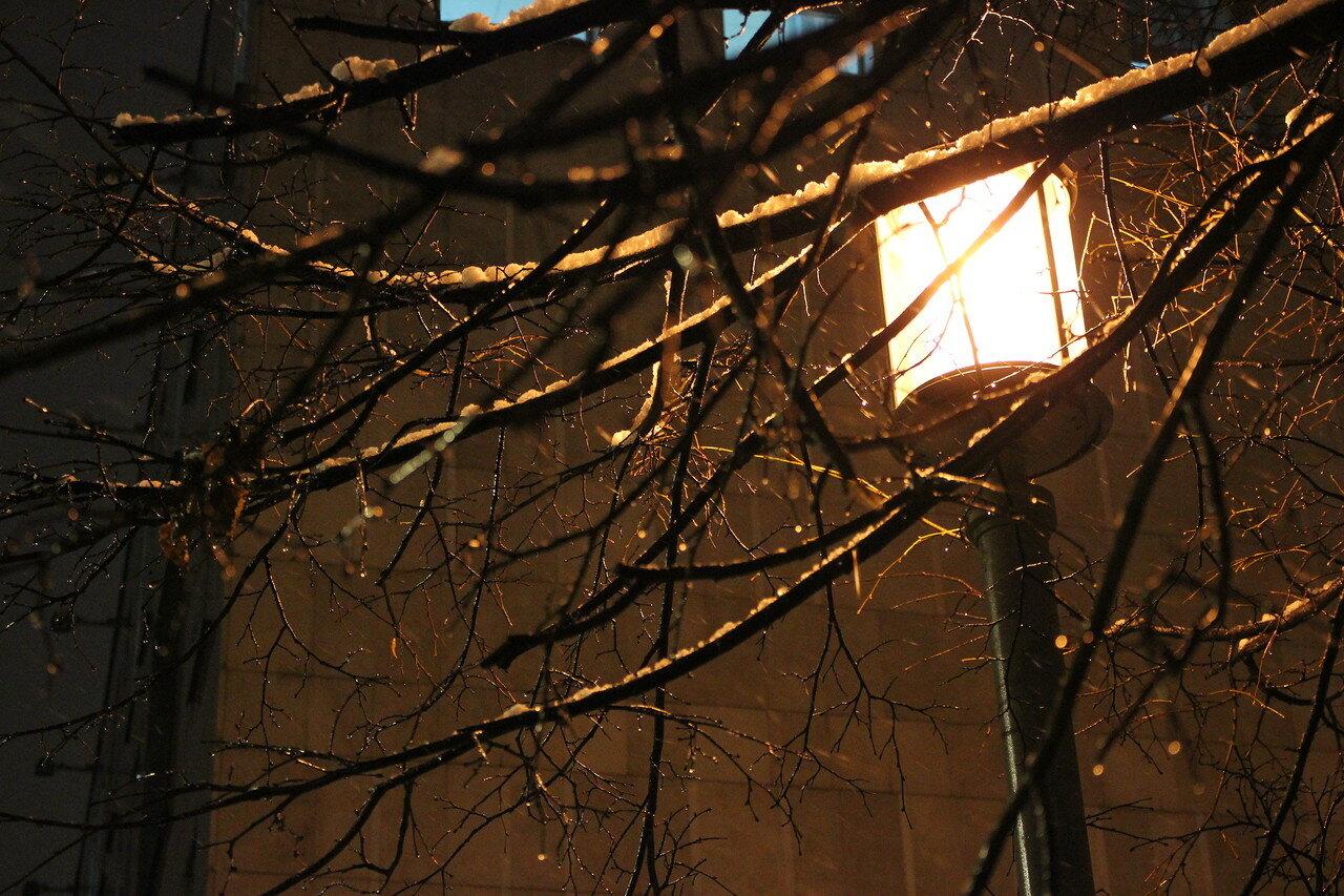 Ночь. Улица. Фонарь