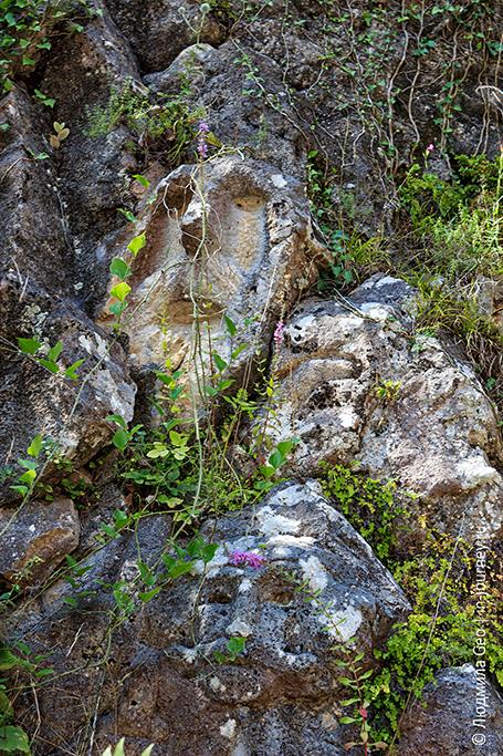 каменные лица в Новом Афоне