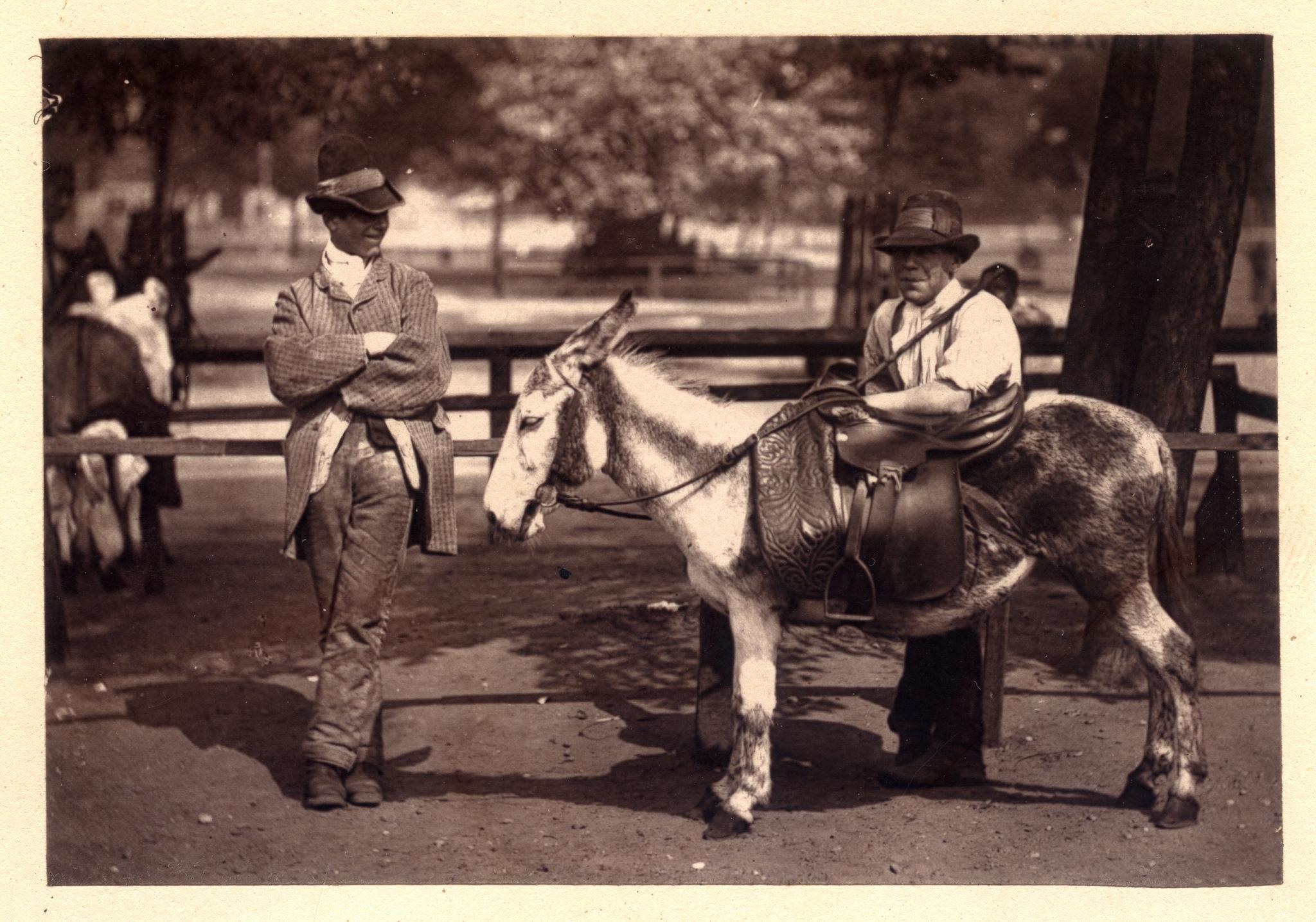 1876. Пони и его хозяин в ожидании клиентов