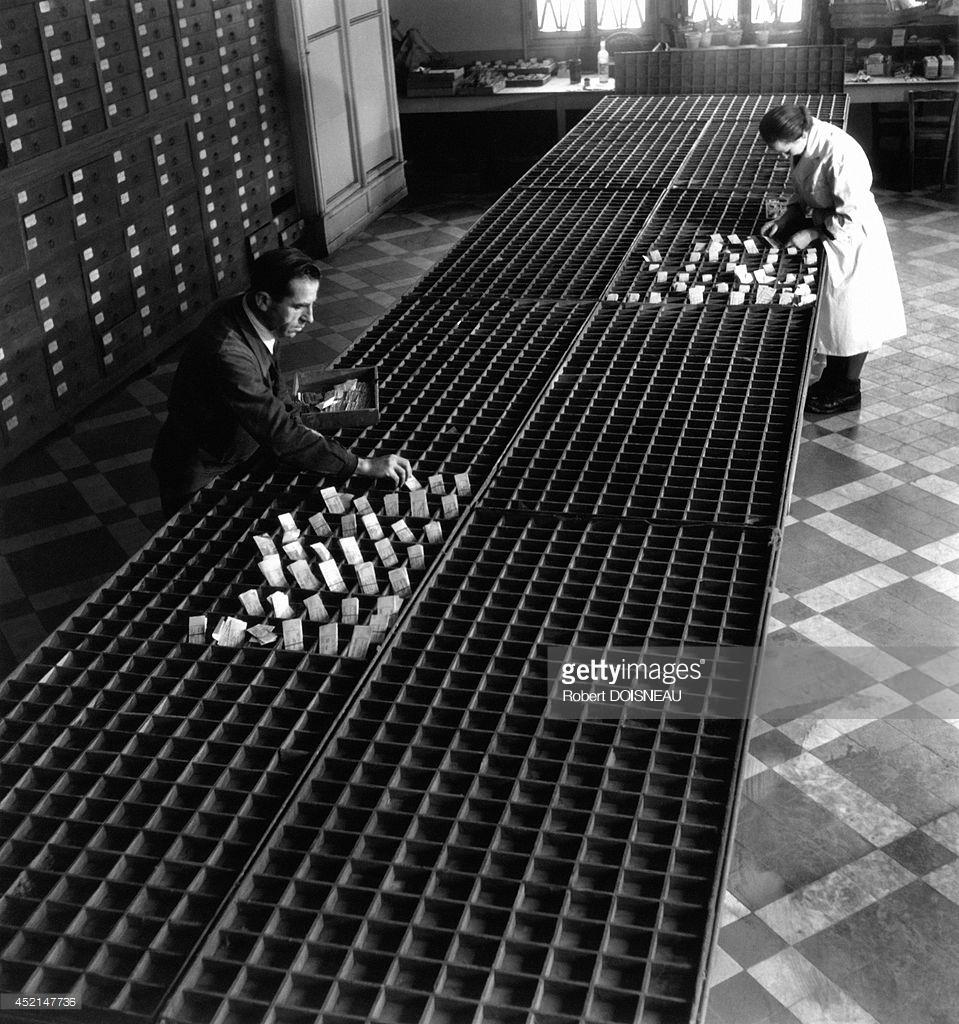 1943. Национальный музей естествознания. Ботаническая галерея. Государственный Гербарий. Лаборатория. Семена