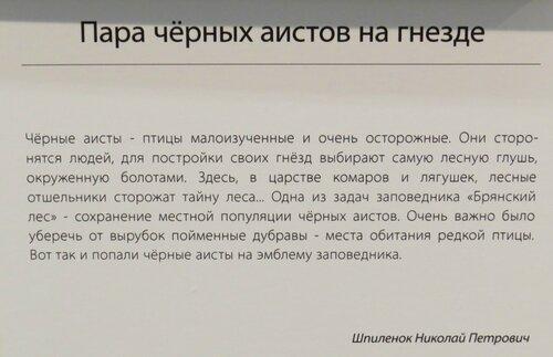 https://img-fotki.yandex.ru/get/508799/140132613.6c1/0_243d74_987200b1_L.jpg