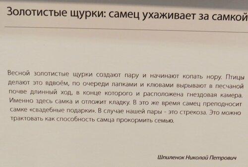 https://img-fotki.yandex.ru/get/508799/140132613.6c1/0_243d78_c4a24624_L.jpg