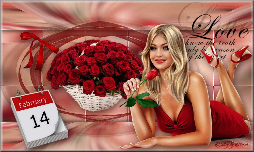 9.02.2018 Roses for Lady2.jpg