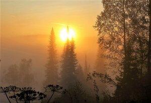 Восходит солнце в утреннем тумане