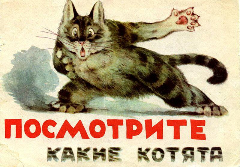 Юле, смешные картинки коты ссср