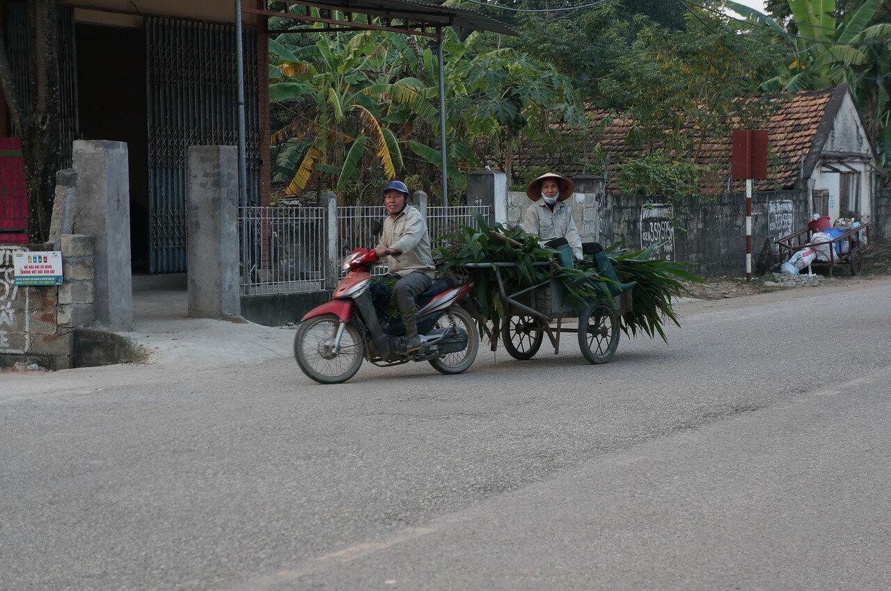 Вьетнам-1